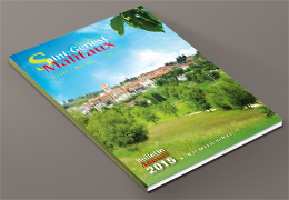 bulletin annuel 2015