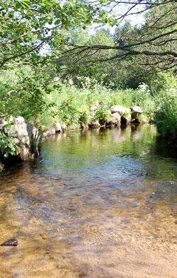 ballade le long de la rivière Semène