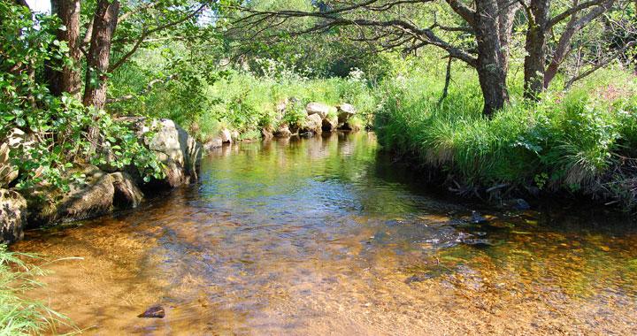<p><strong>Bilan de la qualité des eaux de la Semène</strong></p> <p>Contrat de Rivière Semène</p>