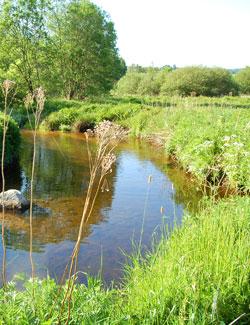 Bilan de qualité des eaux - Contrat rivière Semène