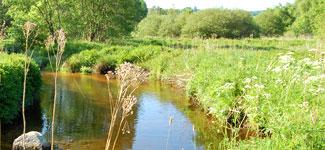étude de la qualité des eaux de la rivière Semène et ses affluents