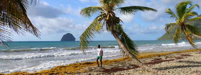 carnet de voyage sur la Guadeloupe et la Martinique