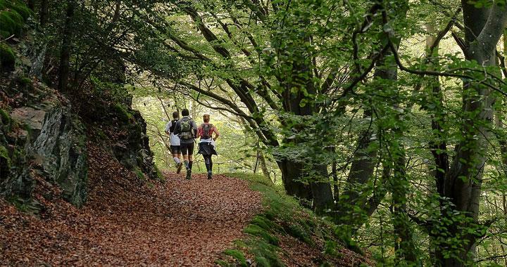 trail du Haut-Pilat