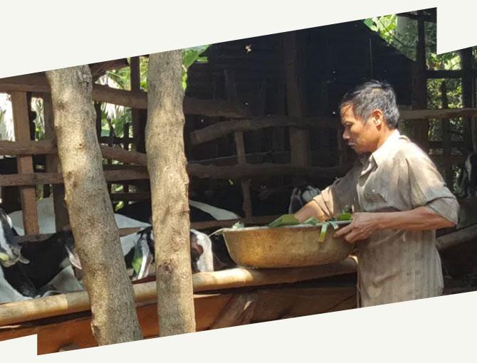 Vietnam, nécessité fait loi